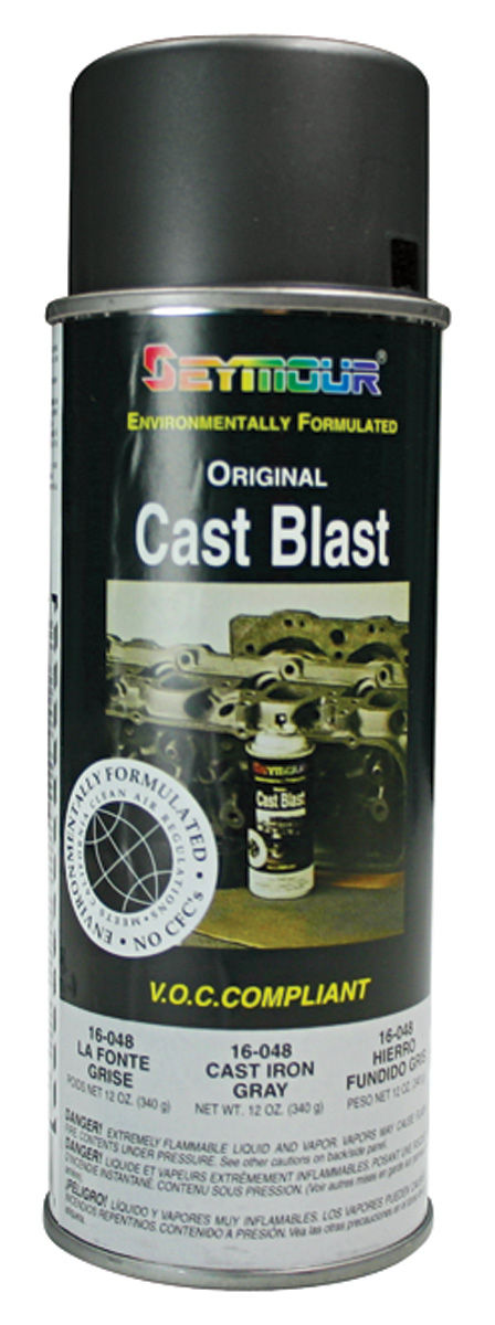 Paint, Cast-Iron Gray 12oz Can