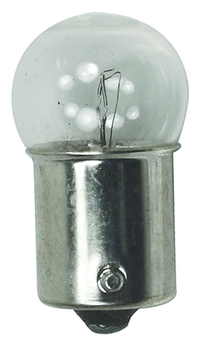 Bulb, License Plate